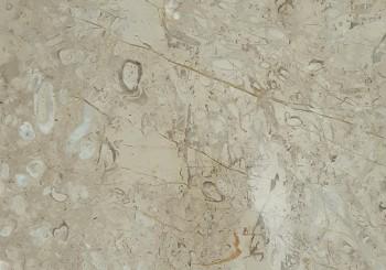 سنگ مرمریت پر طاووسی